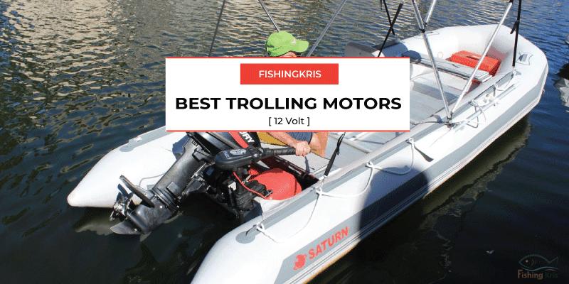 10 Best 12 Volt Trolling Motor