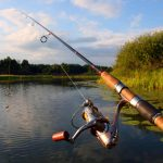 Different Types of Fishing Rods