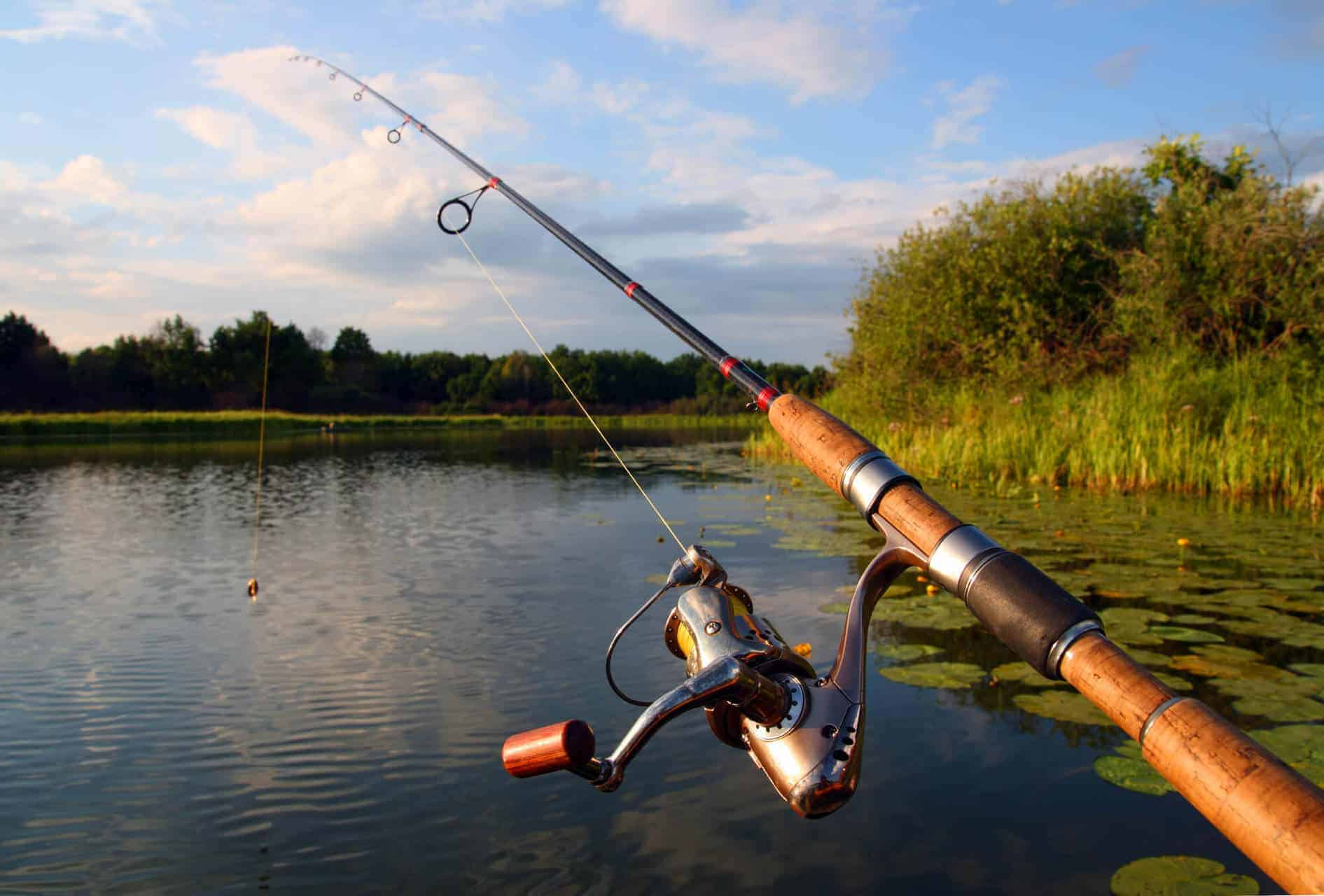 Different Types of Fishing Rods - 8 different types of rods