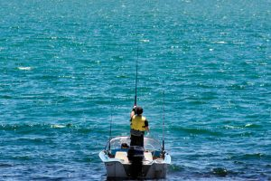 Best offshore fish finder