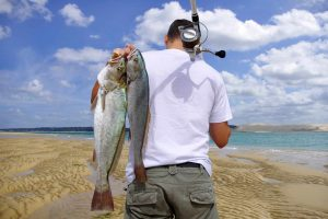 Best-surf-spinning-reel-for-distance