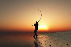 The Best Baitcasting Reel for Surf Fishing