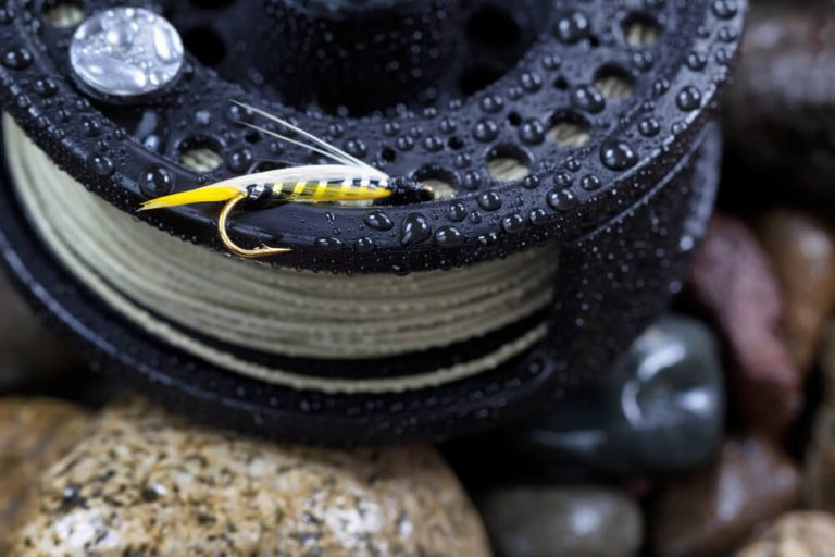 Best saltwater fly fishing reels