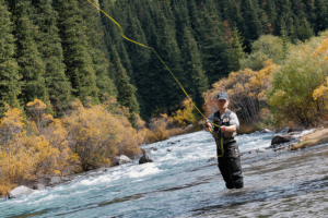 How to Fish in a River with a Strong Current