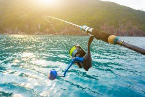 Best inshore saltwater spinning reels