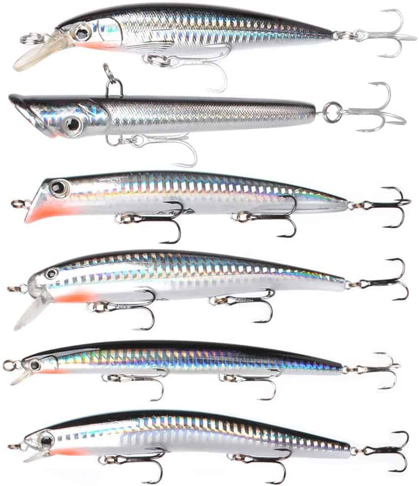 Striped Bass Fishing Lure by Dr Fish