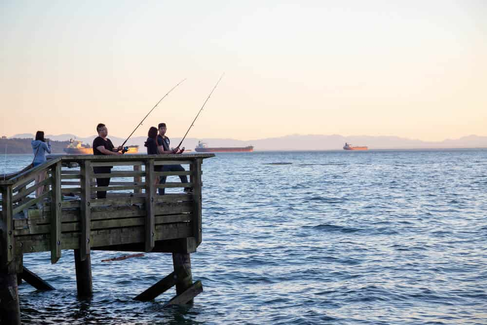 Why Do Fishermen Need Tide Charts? Tides for fishing