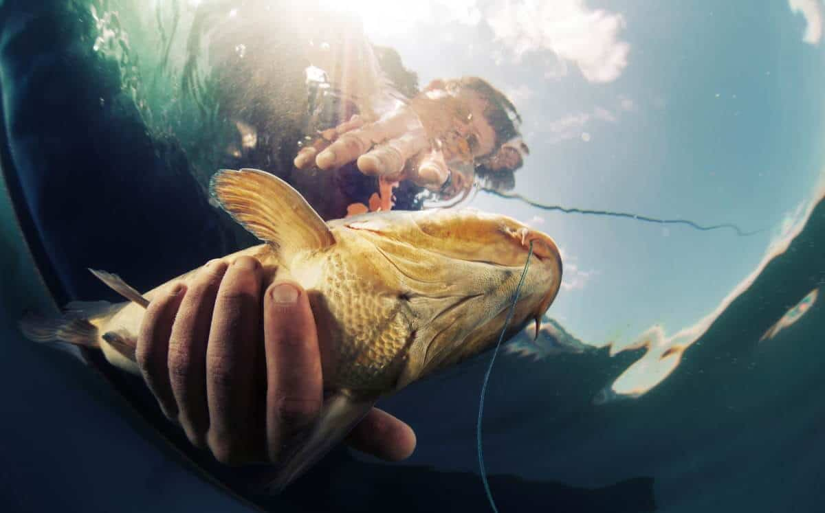 fishing crimping tool