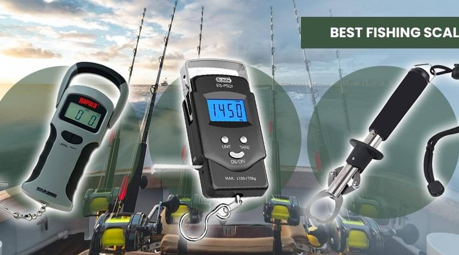 The Best Fishing Scale