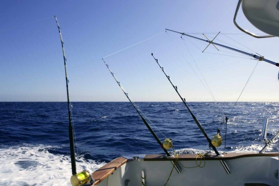 best deep sea fishing tips for beginners