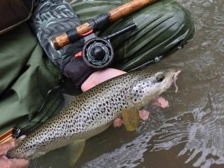 Best-time-to-fish-for-trout