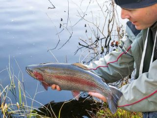 How to Set Up a Fishing Pole for Trout